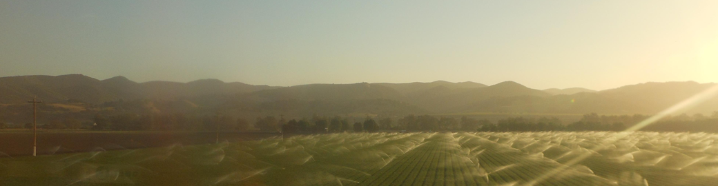 Landscape view of a farm with sprinklers